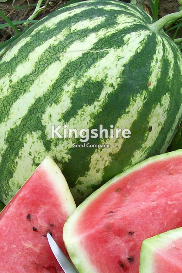 Crimson Sweet Watermelon F1